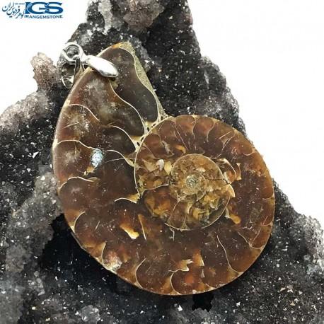 آویز فسیل کلکسیونی آمونیت fossil ammonite