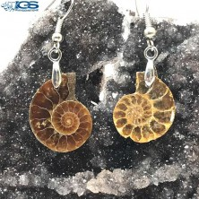 گوشواره فسیل کلکسیونی آمونیت fossil ammonite