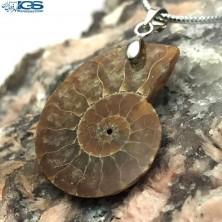 آویز فسیل آمونیت fossil ammonite